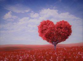 Rubrique blog'ASTROCLAIR- Amour
